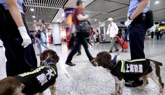 上海地铁全面升级立体安防体系:设立700个安检点